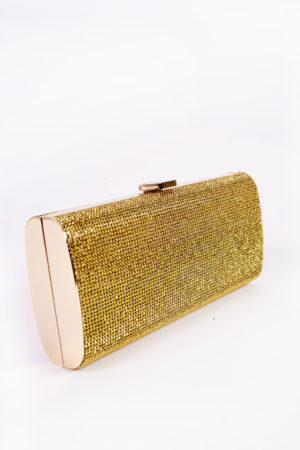 GOLD STONE PANEL CASE CLUTCH